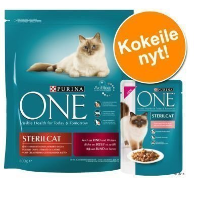 800 g Purina ONE + 6 x 85 g Purina ONE -märkäruokaa - 800 g Beef & Whole Grain Cereals