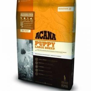 Acana Puppy Large 11