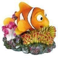 Akvaariokoriste Pusukala & Koralli