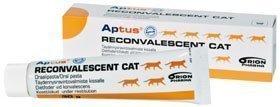 Aptus Reconvalescent Cat 60 G