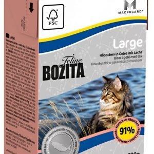 Bozita Feline Large Palat Hyytelössä 16 X 190 G