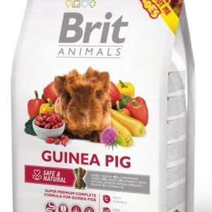 Brit Animals Guinea Pig Complete 1