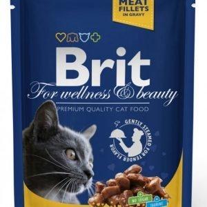 Brit Premium Cat Chicken & Turkey 24x100g