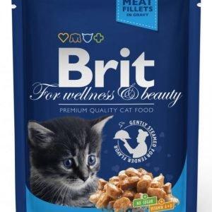 Brit Premium Cat Kitten Chicken Chunks 24x100g
