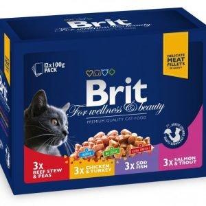 Brit Premium Cat Multipack Fish & Meat 12x100g