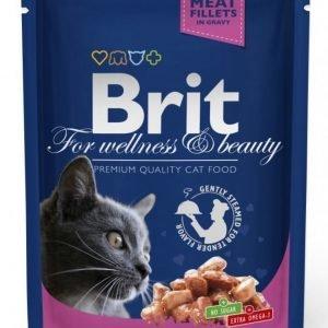 Brit Premium Cat Pouches Salmon & Trout 24x100g