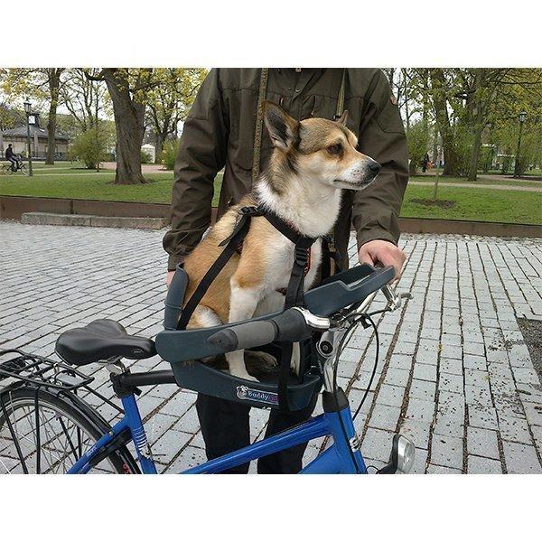 Buddyrider Koiraistuin Pyörään
