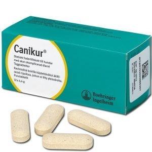 Canikur Tabletit 12x4