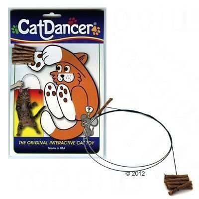 Cat Dancer - 1 kpl
