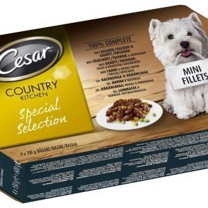 Cesar Country 4 X 150 G Special Selection -pakkaus