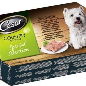 Cesar Country Special Selection Mureke 4 X 150 G Koiran Ruoka