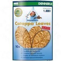 Dennerle Catappa Leaves - 8 kpl