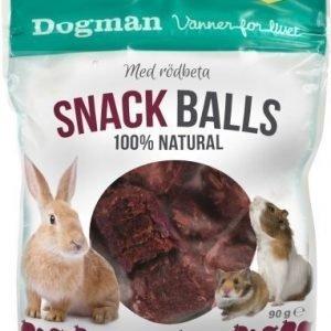 Dogman Smådjur Snack Balls 90g