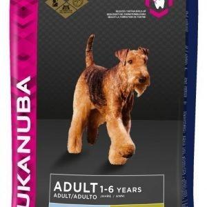 Eukanuba Dog Adult Large 12 Kg