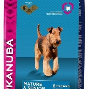 Eukanuba Dog Adult Mature & Senior Large 12 Kg
