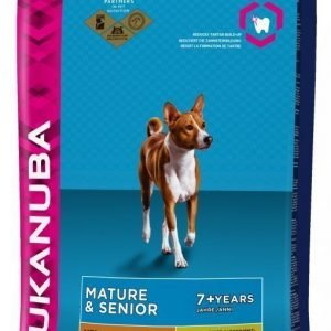 Eukanuba Dog Adult Mature & Senior Medium 12 Kg
