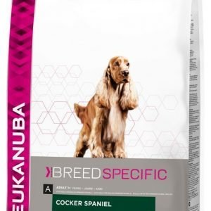 Eukanuba Dog Cocker Spaniel 7