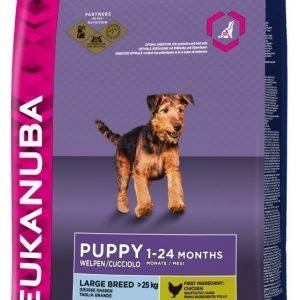Eukanuba Dog Puppy Large 12kg