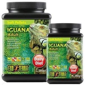 Exoterra Iguana Adult Soft Pellets 540 G