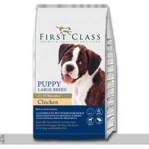 First Class Kuivamuona Puppy Large Breed Chicken
