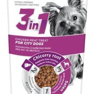 Fitmin 3in1 Dog City Chicken 100 G Makupala