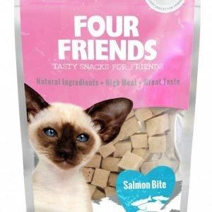 Four Friends Cat Salmon Bite 30g