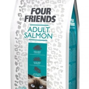 Four Friends Kissa Adult Salmon 12 Kg