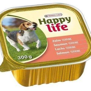 Happy Life Lohiterriini 18kpl