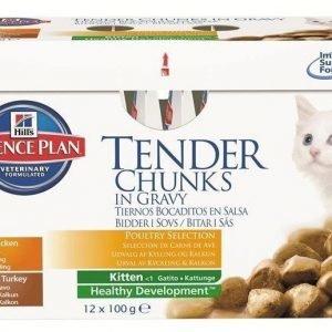 Hill's Science Plan Feline Kitten Poultry Selection 12x85g