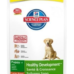 Hill's Science Plan Puppy Large Breed Chicken 16kg