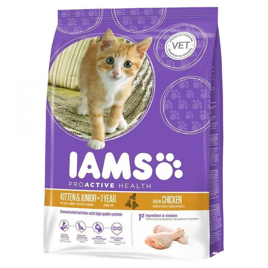 Iams Kitten & Junior 10 Kg