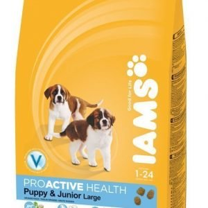 Iams Puppy & Junior Large 12kg