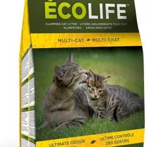 Intersand Ecolife Multicat 4