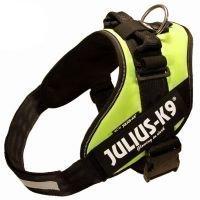 Julius-K9 IDC® Power -koiranvaljaat