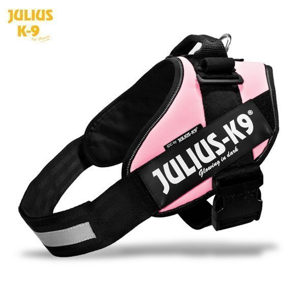 Julius K9 Idc Powerharness Roosa