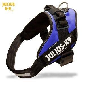 Julius K9 Idc Powerharness Sininen