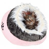 Kissanpeti Minou iglu roosa tassukuvio