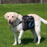 Koiran selkäreppu