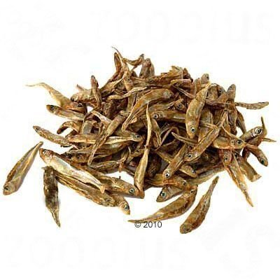 Kuivakala (Rastrineobola argentea) - 500 g