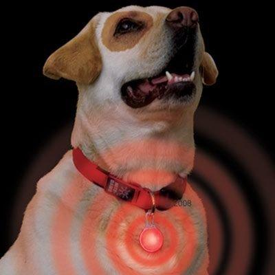 LED-karbiiniturvariipus - punainen