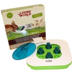 Living World Aktivointilelu Teach 'N Treat 3 In 1