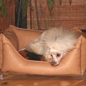 Ol Koiranpeti 50x60 Cm