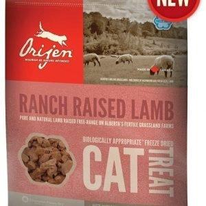 Orijen Cat Treats Ranch Raised Lamb 35 G