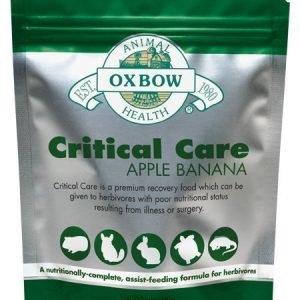 Oxbow Critical Care Omena / Banaani 454 G