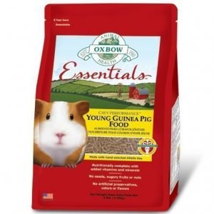 Oxbow Essentials Young Guinea Pig 4.53 Kg