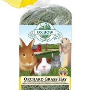 Oxbow Heinä Orchard Grass 425 G