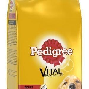 Pedigree Adult Siipikarjaa Ja Kasviksia 14 Kg Koiran Kuivaruoka