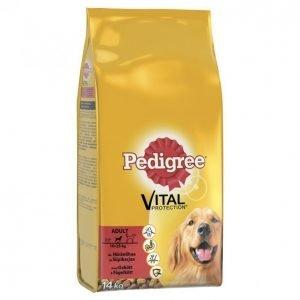 Pedigree Koiranruoka 14kg Adult Häränliha-Siipikarja