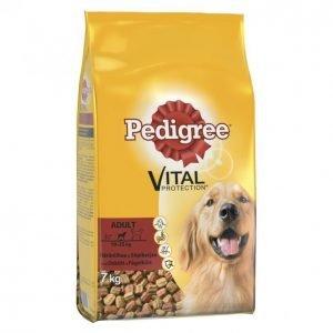 Pedigree Koiranruoka 7kg Adult Häränl-Siipikarja
