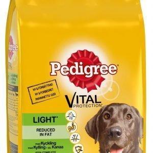 Pedigree Light Kanaa 2